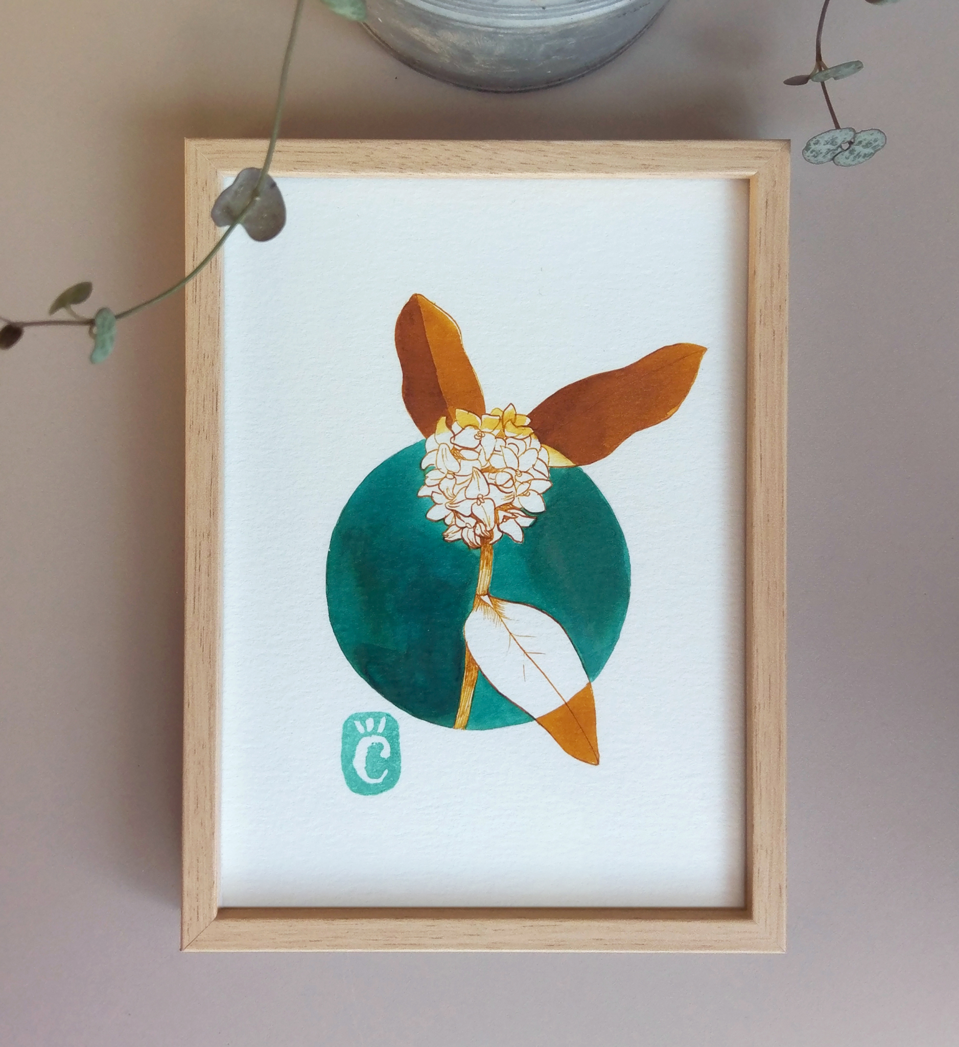 Dessin original à l'encre colorée // Daphné // série Fleurs hivernales