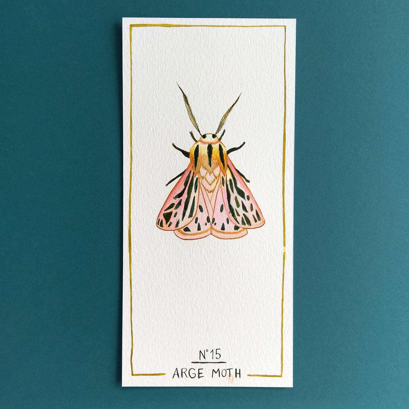arge moth - dessin original à l'encre en vente